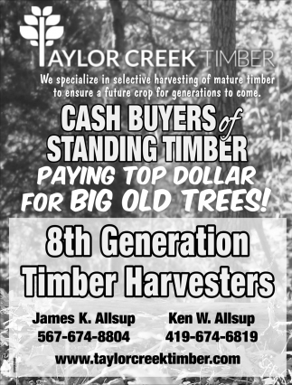 Buyers of Standing Timber