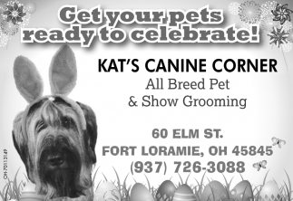 Get your pets ready to celebrate!