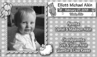 Elliot Michael Aikin