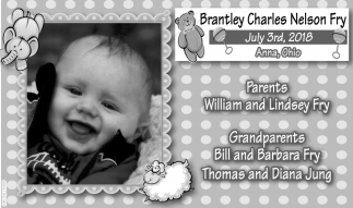 Brantley Charles Nelson Fry