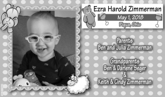Ezra Harold Zimmerman