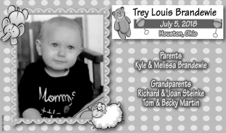 Trey Louis Brandewie
