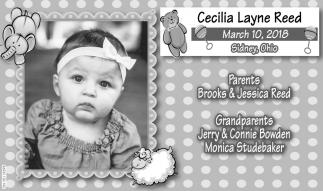 Cecilia Layne Reed