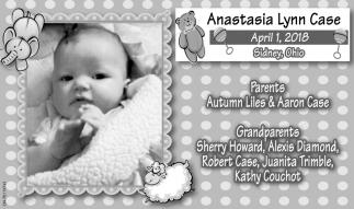 Anastasia Lynn Case