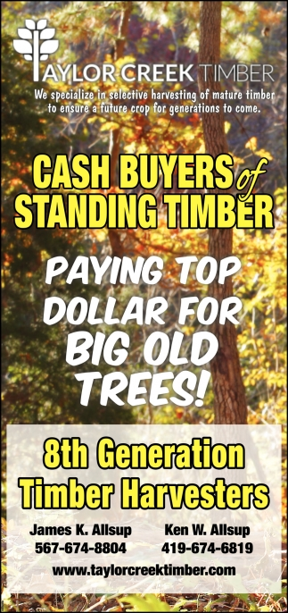 Cash Buyers of Standing Timber