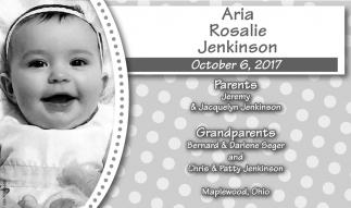 Aria Rosalie Jenkinson